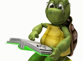 Turtle Reading